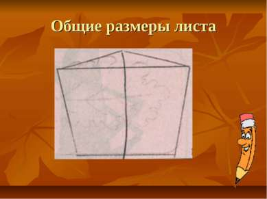 Общие размеры листа