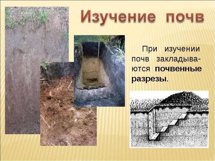 При изучении почв закладыва-ются почвенные разрезы.