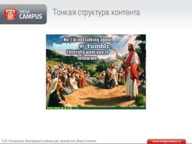 Тонкая структура контента П.Ю. Каллиников. Электронный учебный курс: монолит ...