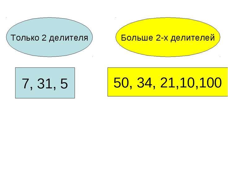 Только 2 делителя Больше 2-х делителей 7, 31, 5 50, 34, 21,10,100