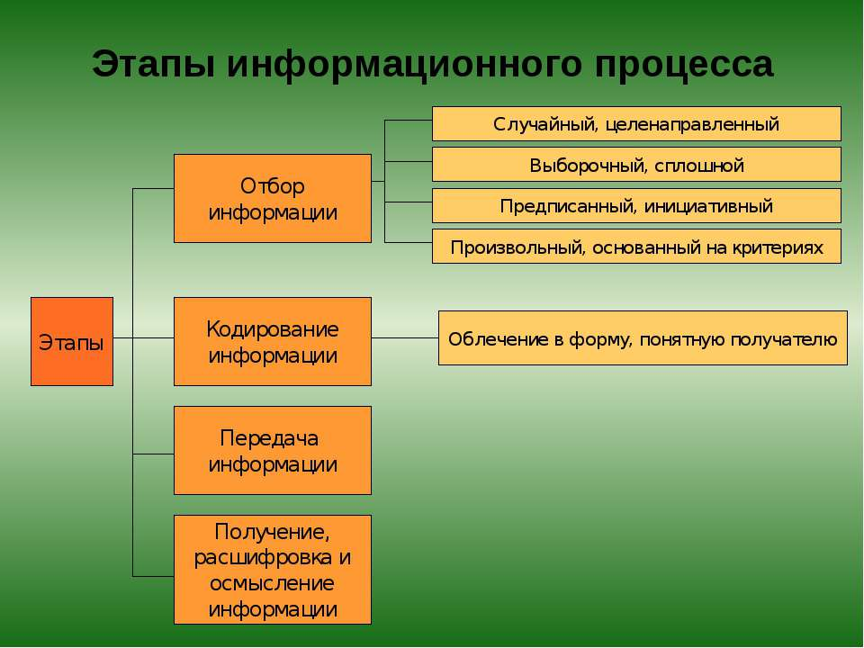 Этапы информационного процесса Этапы Отбор информации Случайный, целенаправле...