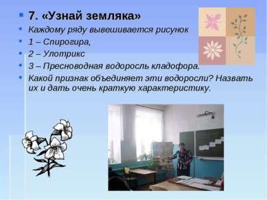 7. «Узнай земляка» Каждому ряду вывешивается рисунок 1 – Спирогира, 2 – Улотр...