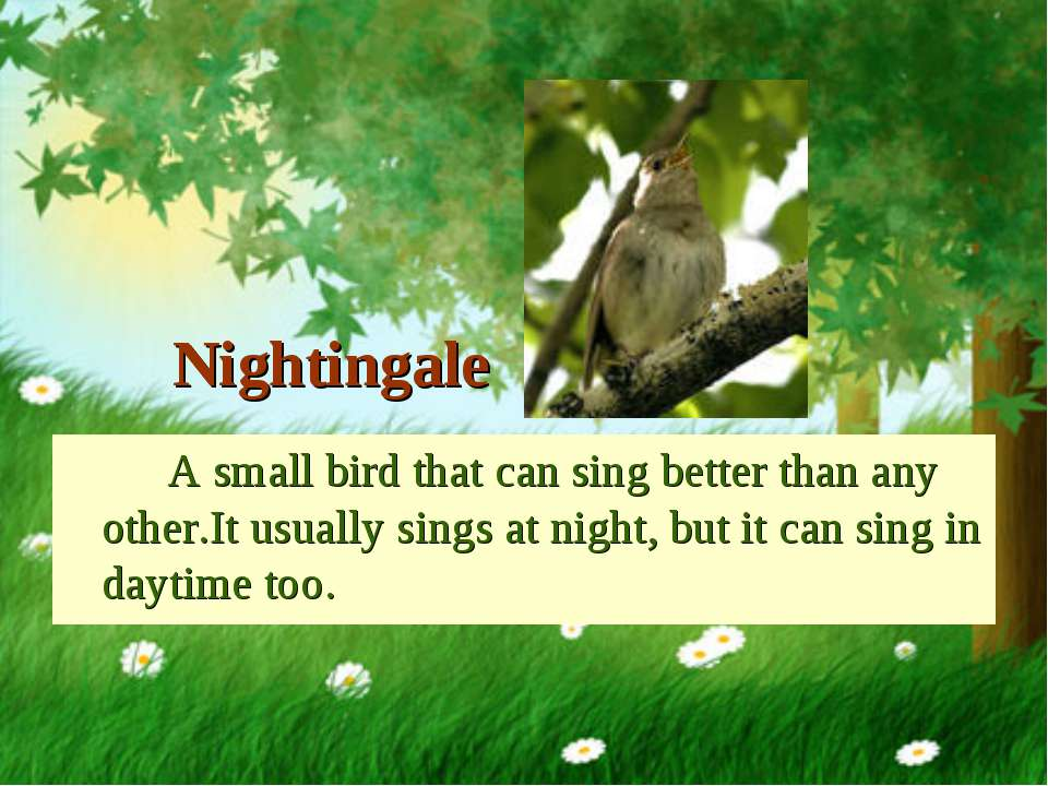 Nightingale A small bird that can sing better than any other.It usually sings...