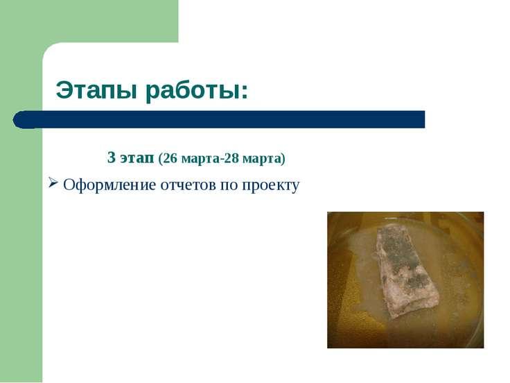 Этапы работы: 3 этап (26 марта-28 марта) Оформление отчетов по проекту