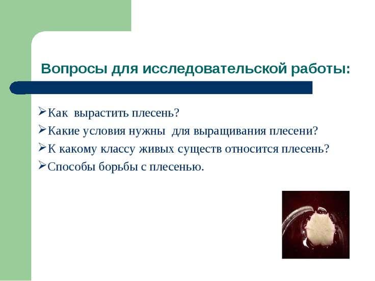 Вопросы для исследовательской работы: Как вырастить плесень? Какие условия ну...