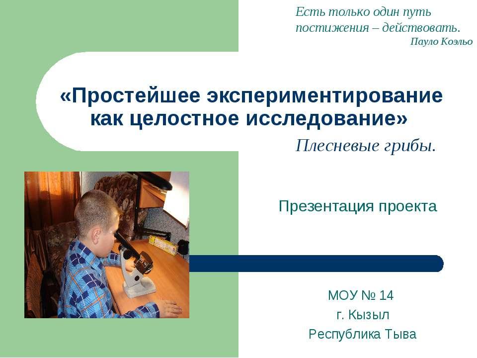 «Простейшее экспериментирование как целостное исследование» Презентация проек...