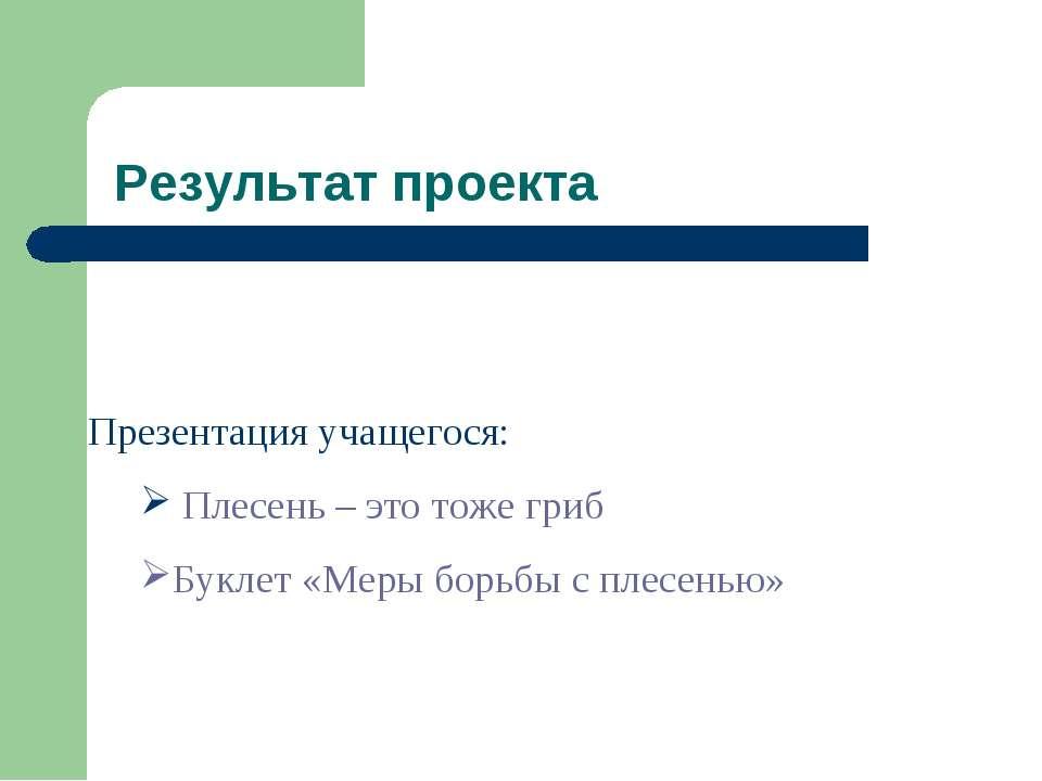Результат проекта Презентация учащегося: Плесень – это тоже гриб Буклет «Меры...