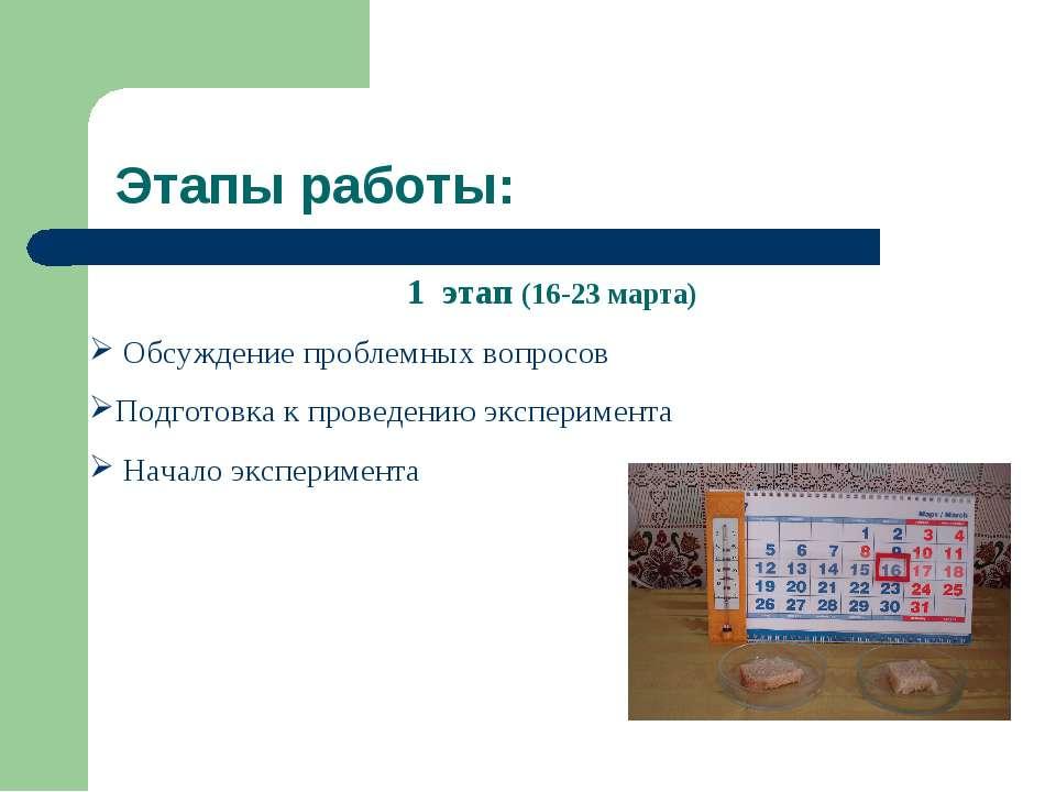 Этапы работы: 1 этап (16-23 марта) Обсуждение проблемных вопросов Подготовка ...