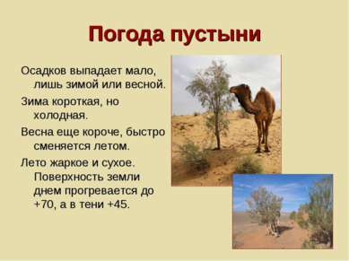 Погода пустыни Осадков выпадает мало, лишь зимой или весной. Зима короткая, н...
