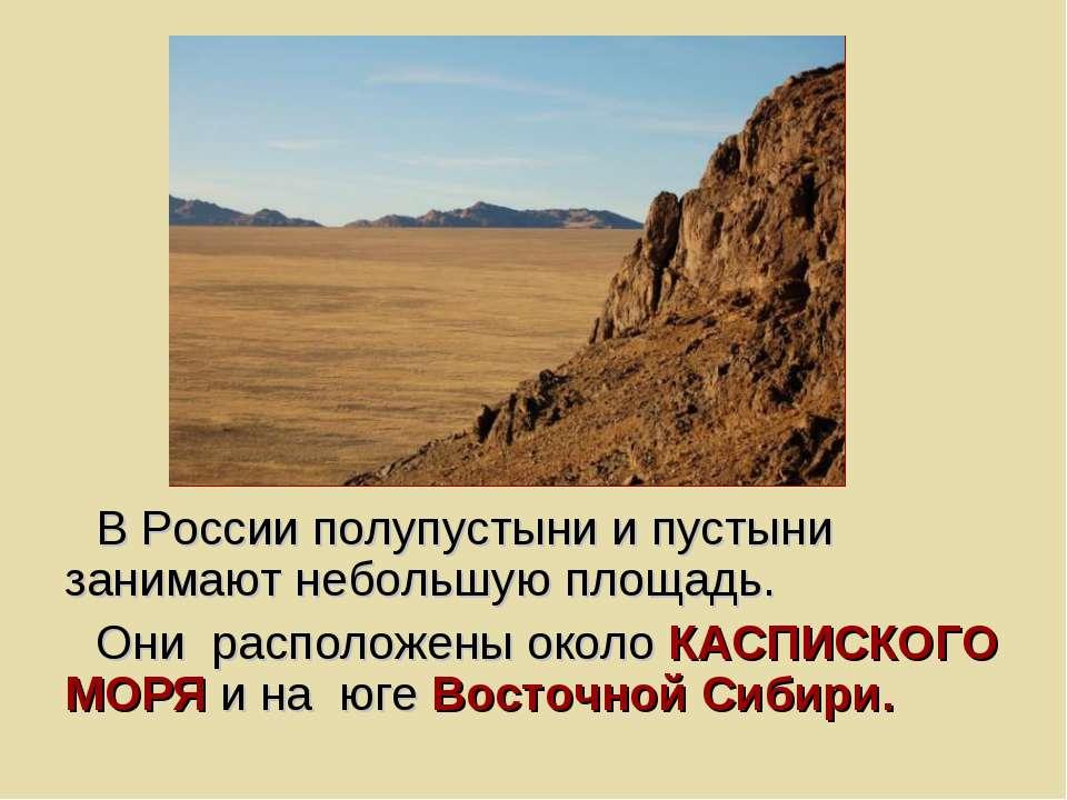 В России полупустыни и пустыни занимают небольшую площадь. Они расположены ок...