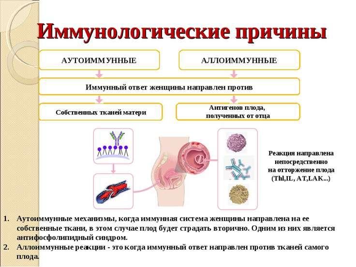 Иммунологические причины АУТОИММУННЫЕ АЛЛОИММУННЫЕ Иммунный ответ женщины нап...