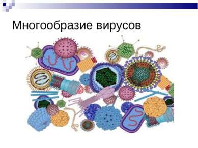 Многообразие вирусов