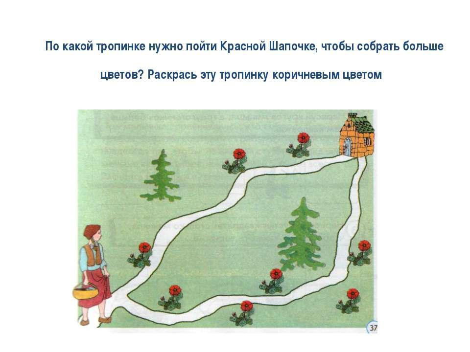 По какой тропинке нужно пойти Красной Шапочке, чтобы собрать больше цветов? Р...
