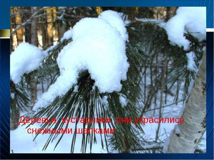 Деревья, кустарники, пни украсились снежными шапками.