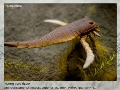 Кроме того были распространеныракоскорпионы,мшанки,губки,граптолиты. Рако...