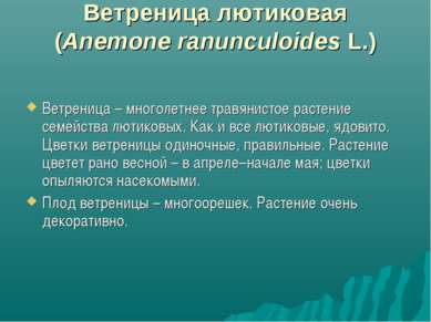 Ветреница лютиковая (Anemone ranunculoides L.) Ветреница– многолетнее травян...