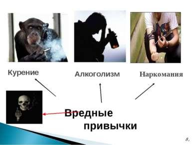 * Вредные привычки Курение Алкоголизм Наркомания