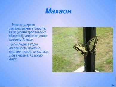 Махаон Махаон широко распространен в Европе, Азии (кроме тропических областей...