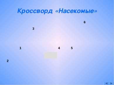 Кроссворд «Насекомые»