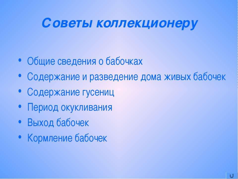 Советы коллекционеру Общие сведения о бабочках Содержание и разведение дома ж...