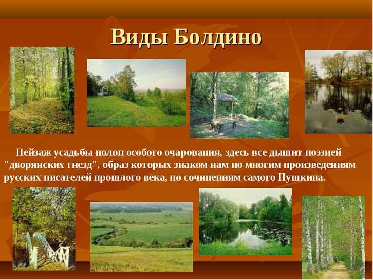 """Пейзаж усадьбы полон особого очарования, здесь все дышит поэзией """"дворянских ..."""