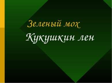 Зеленый мох Кукушкин лен