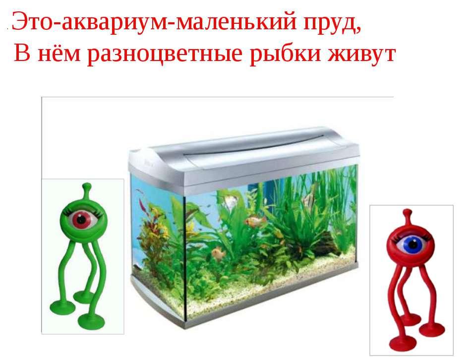. Это-аквариум-маленький пруд, В нём разноцветные рыбки живут
