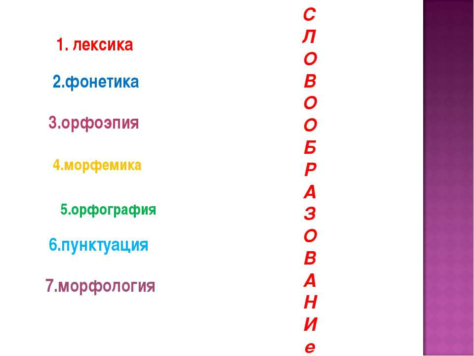 1. лексика 2.фонетика 3.орфоэпия 4.морфемика 5.орфография 6.пунктуация 7.морф...