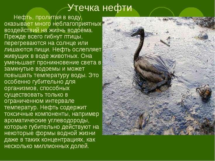 Утечка нефти Нефть, пролитая в воду, оказывает много неблагоприятных воздейст...