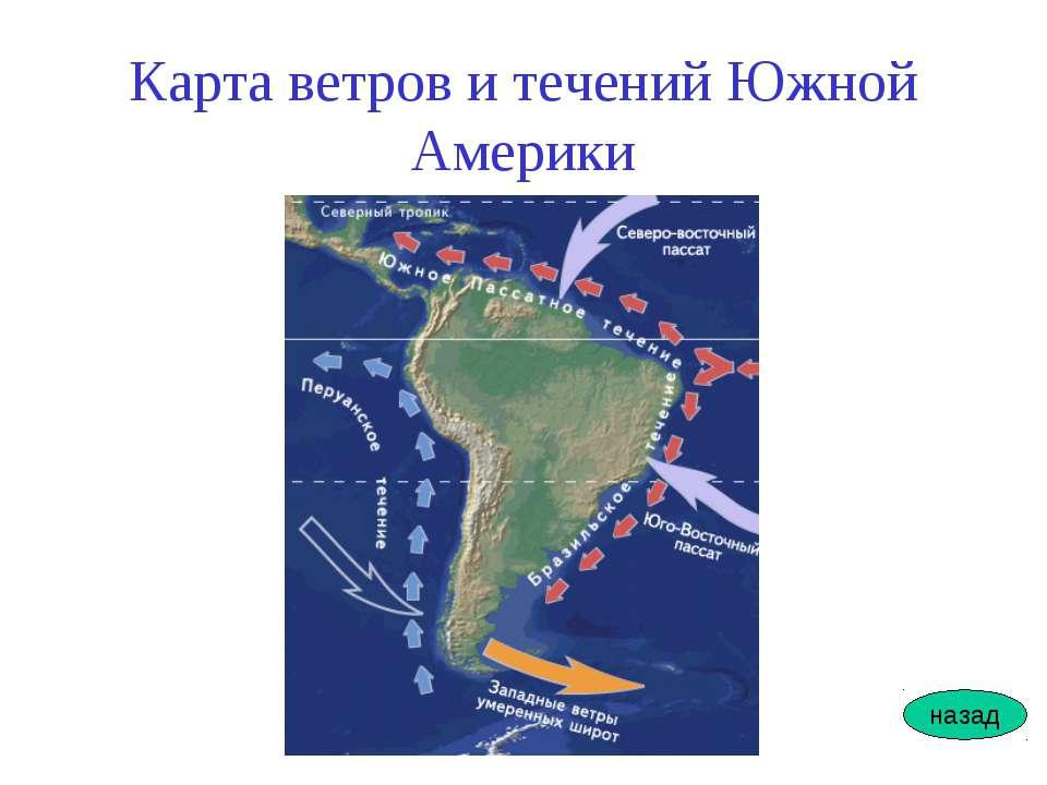 Карта ветров и течений Южной Америки назад