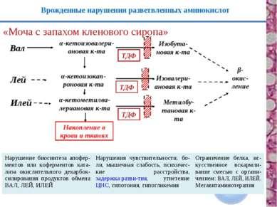 β-окис- ление Врожденные нарушения разветвленных аминокислот «Моча с запахом ...