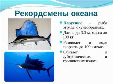 Рекордсмены океана Парусник – рыба отряда окунеобразных. Длина до 3,3 м, масс...