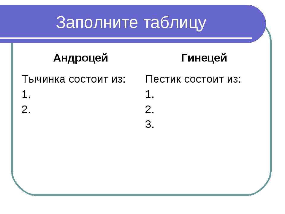 Заполните таблицу Андроцей Гинецей Тычинка состоит из: 1. 2. Пестик состоит и...