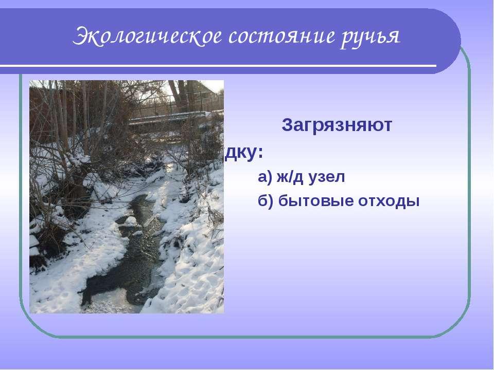Загрязняют Рудку: а) ж/д узел б) бытовые отходы Экологическое состояние ручья