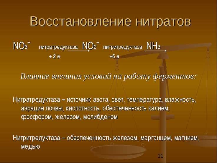 Восстановление нитратов NО3ˉ нитратредуктаза NО2ˉ нитритредуктаза NН3 + 2 е +...