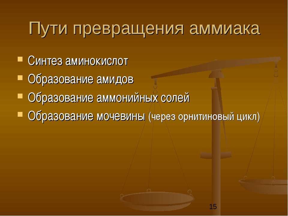 Пути превращения аммиака Синтез аминокислот Образование амидов Образование ам...