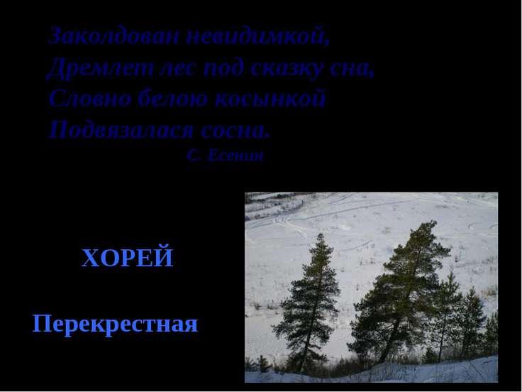 Заколдован невидимкой, Дремлет лес под сказку сна, Словно белою косынкой Подв...
