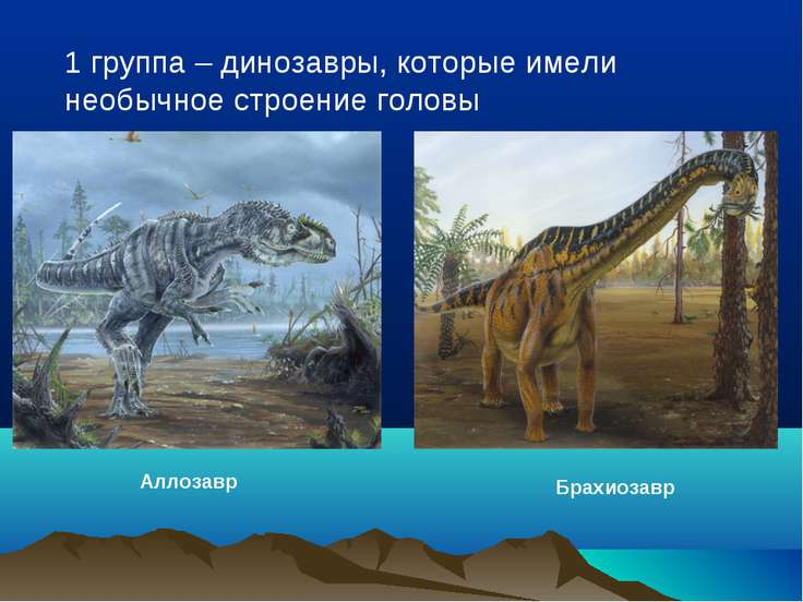 1 группа – динозавры, которые имели необычное строение головы Аллозавр Брахио...