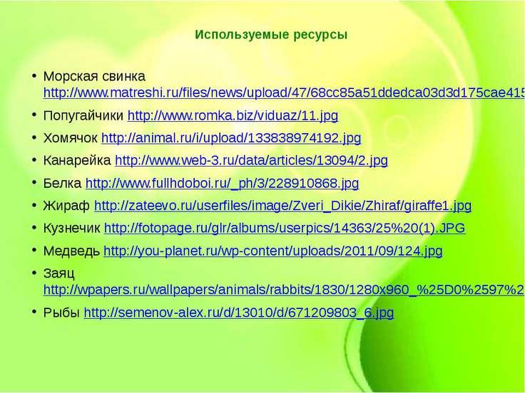 Используемые ресурсы Морская свинка http://www.matreshi.ru/files/news/upload/...