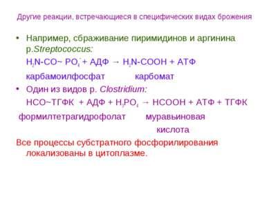 Другие реакции, встречающиеся в специфических видах брожения Например, сбражи...