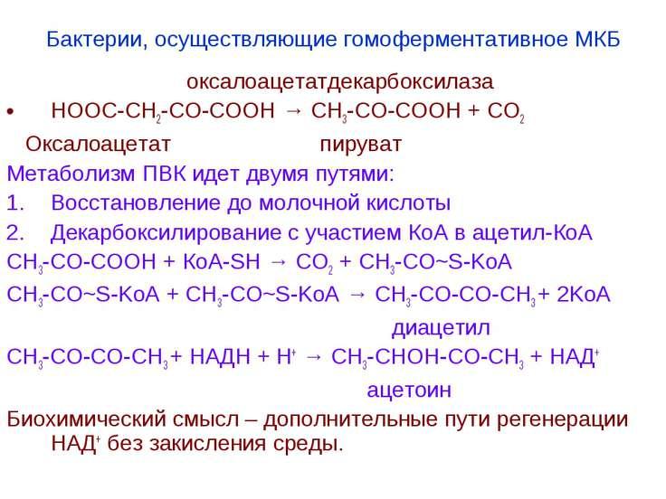 Бактерии, осуществляющие гомоферментативное МКБ оксалоацетатдекарбоксилаза НО...