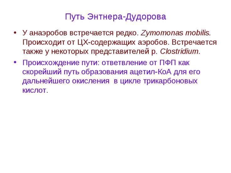 Путь Энтнера-Дудорова У анаэробов встречается редко. Zymomonas mobilis. Проис...