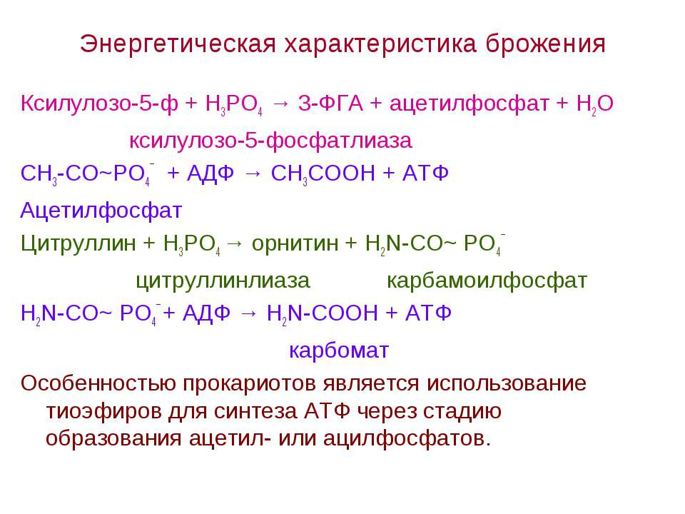 Энергетическая характеристика брожения Ксилулозо-5-ф + Н3РО4 → 3-ФГА + ацетил...