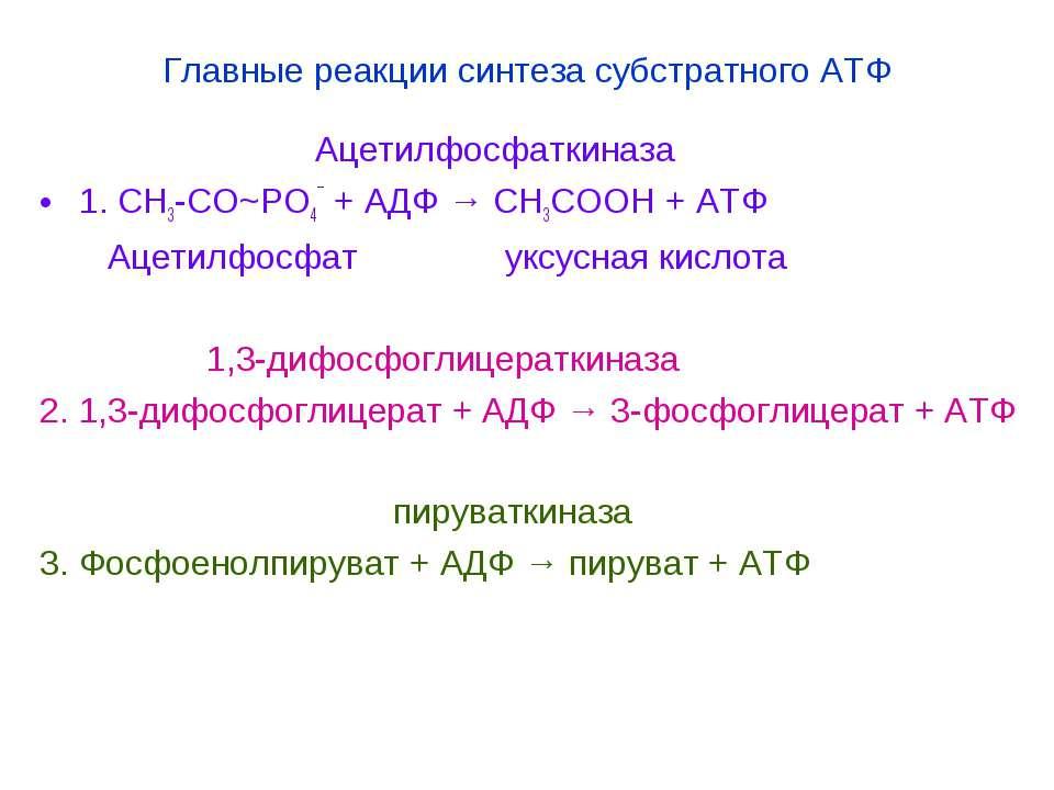 Главные реакции синтеза субстратного АТФ Ацетилфосфаткиназа 1. СН3-СО~РО4¯ + ...