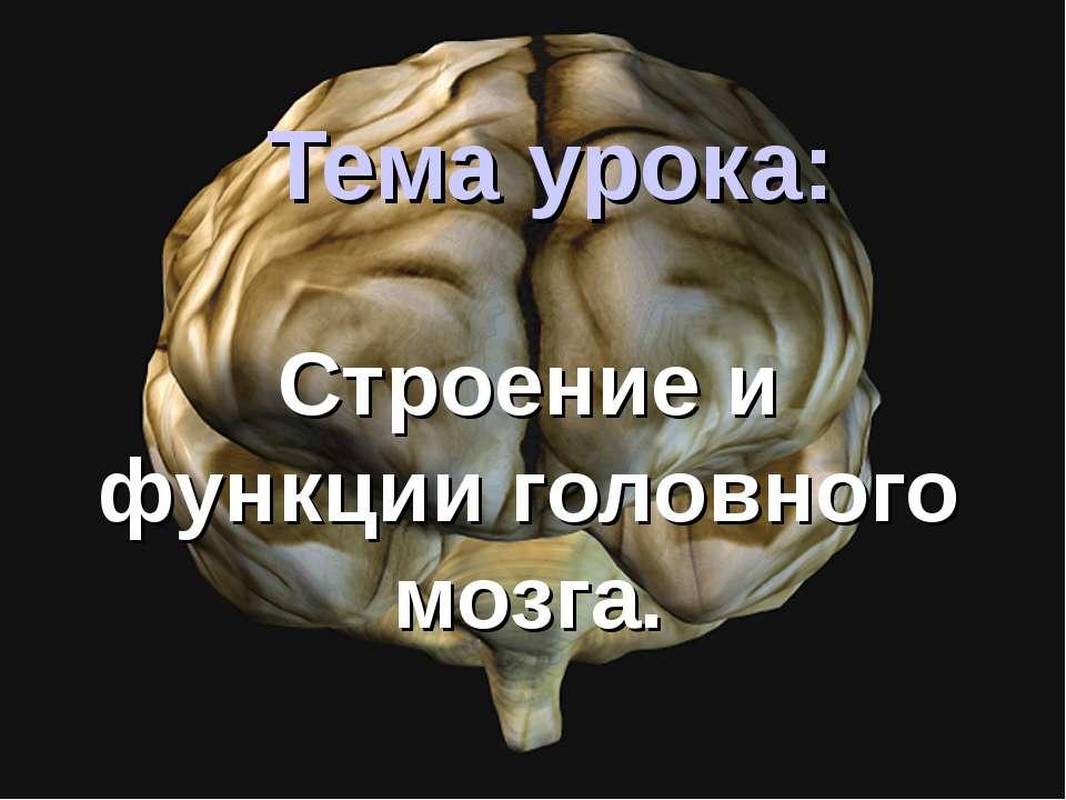 Тема урока: Строение и функции головного мозга.