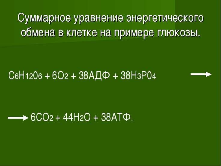 Суммарное уравнение энергетического обмена в клетке на примере глюкозы. C6H12...