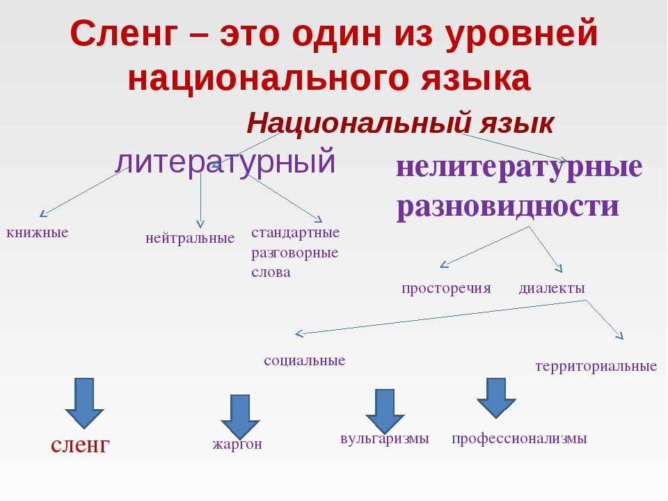 Сленг – это один из уровней национального языка Национальный язык литературны...