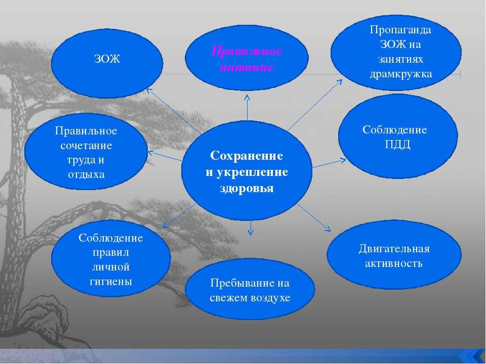 Сохранение и укрепление здоровья Правильное питание Правильное сочетание труд...