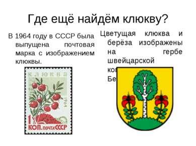 Где ещё найдём клюкву? В 1964 году в СССР была выпущена почтовая марка с изоб...