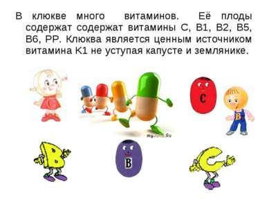 В клюкве много витаминов. Её плоды содержат содержат витамины С, B1, B2, B5, ...